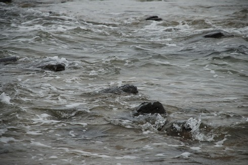 Rocky waves by Claire Rosslyn Wilson