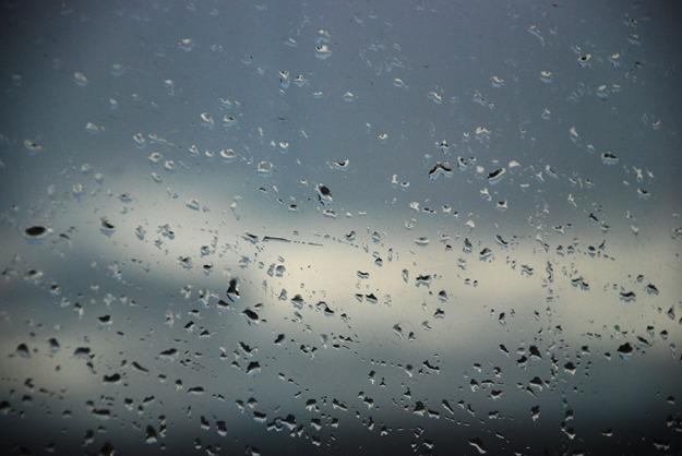 Rain drops © Claire Rosslyn Wilson