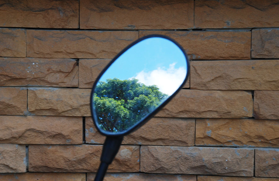 Side mirror by Claire Rosslyn Wilson