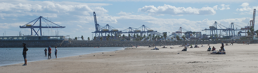 Beach cranes by Claire Rosslyn Wilson