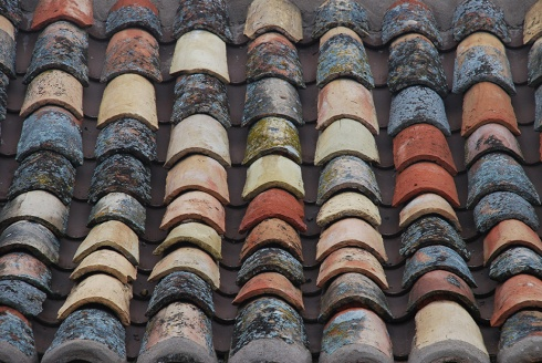 Roof Tiles by Claire Rosslyn Wilson